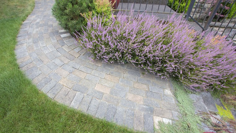 curb appeal projects: brick and thyme walkway