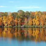 Beautiful view of Chris Greene lake in Charlottesville with a background of fall foliage