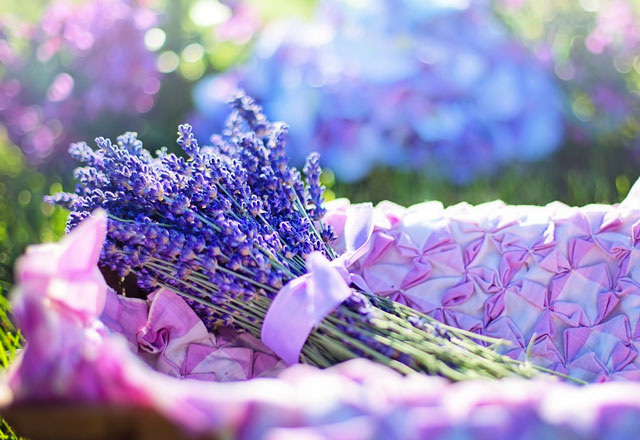 spring scents in your home