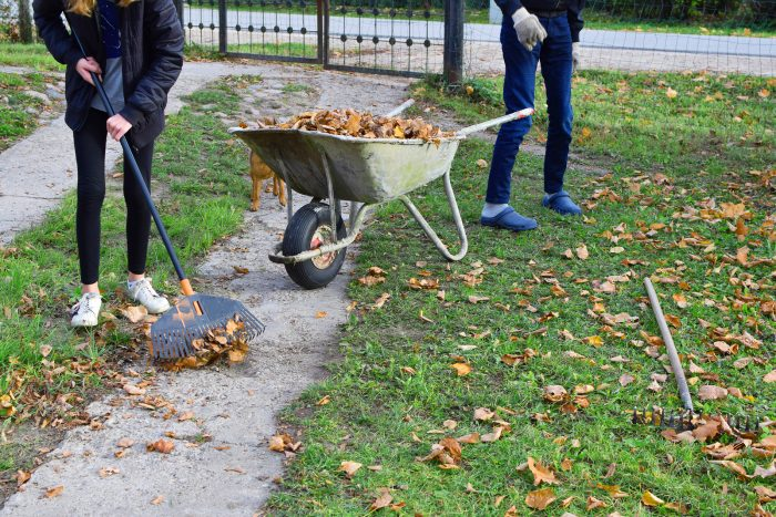 Teen boy and girl raking dry autumn leaves