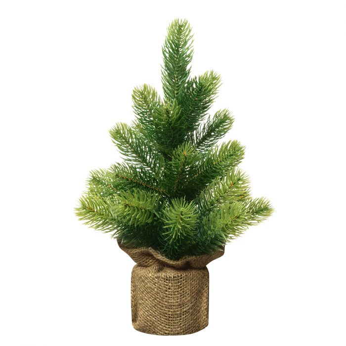 Bushy small green Christmas tree without decorations in a pot wrapped isolated on white background.