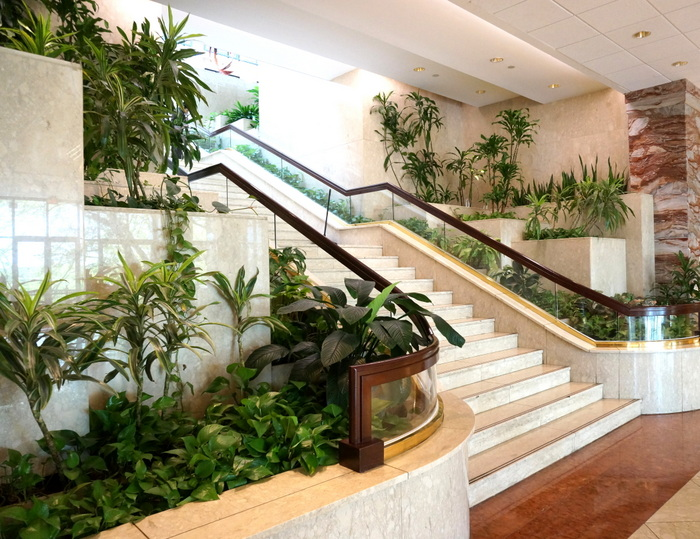 retro business lobby and stairs surrounded by lush green plants