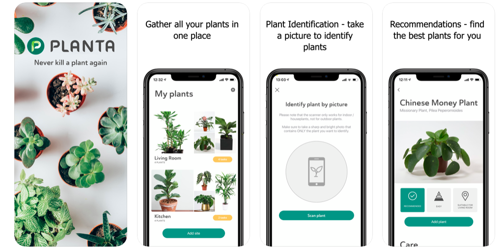 planta for homeowners plant care