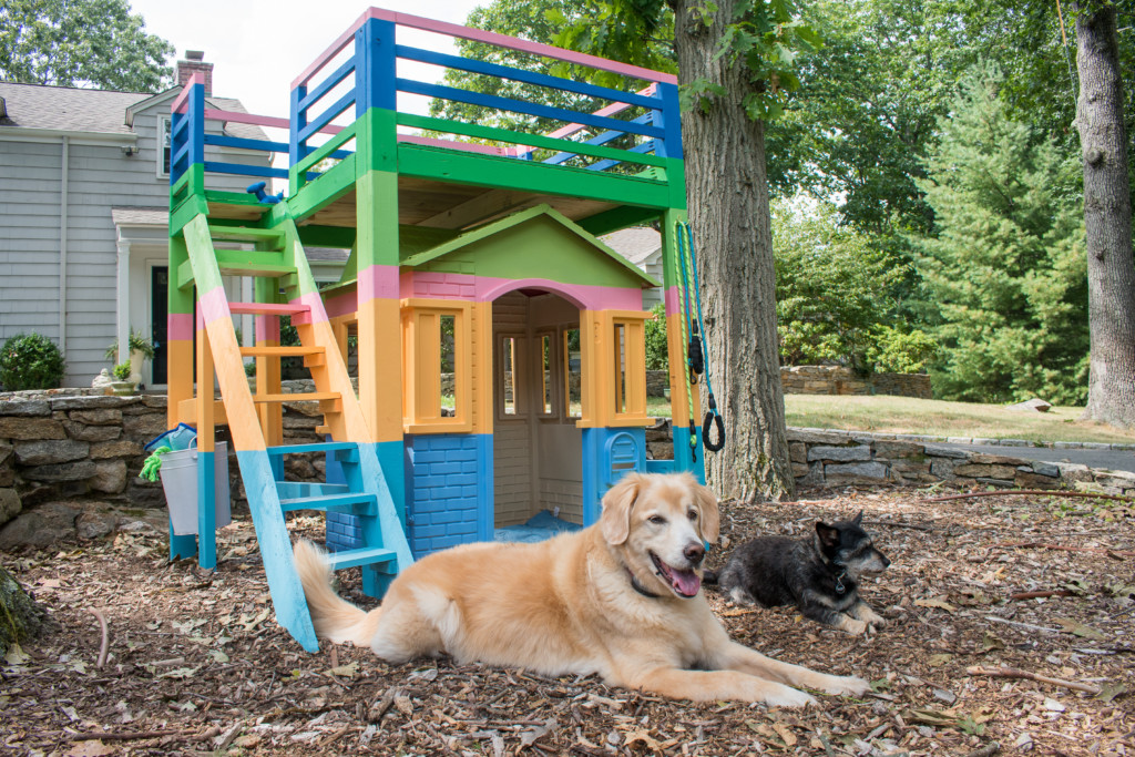 dog house do it yourself